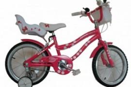 Bicicleta Skyland 16 Niña