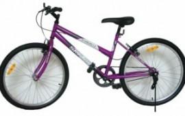 Bicicleta Skyland 24 MTB Dama