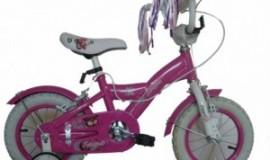 Bicicleta Skyland 12 Niña