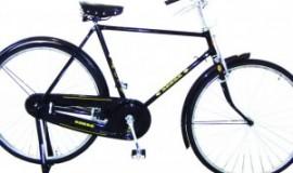 Bicicleta 28 tipo INGLESA Hombre
