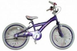 Bicicleta Skyland 20 Niña